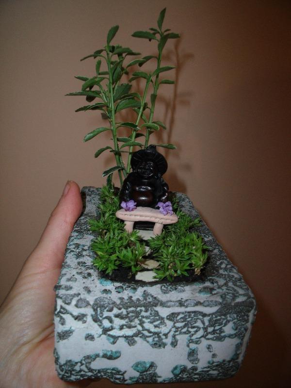 miniatűr zen kert
