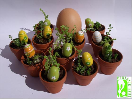jóba katalin miniatűr kert