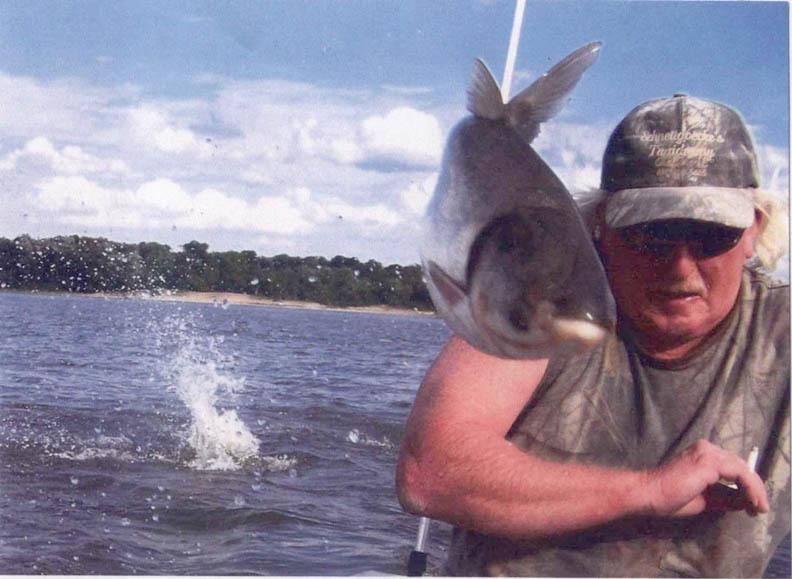 hal ütés
