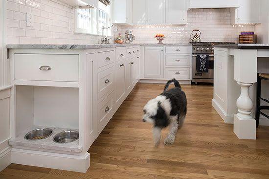 Modern konyhabútor-kutya