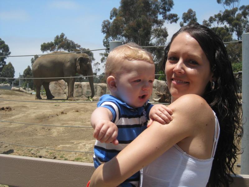 Shane-nel az elefánt jelét tanultuk
