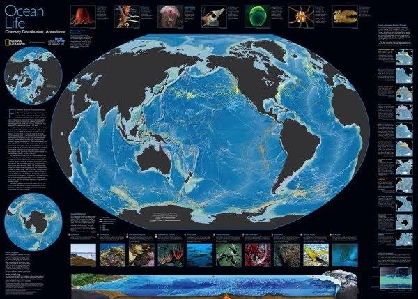 óceán NG