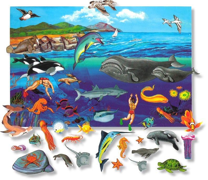 óceán élővilág
