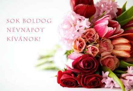 boldog katalin napot Boldog Katalin napot! :)   Derűlátó boldog katalin napot